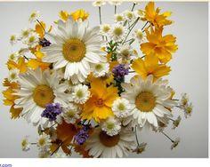 Flores que eu amo. By  Bibi Villela. Decorar é um Prazer.