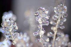 'Ice Flowers'
