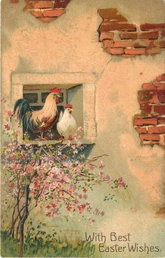 PFB Easter~Green Tailed Rooster & White Hen in Barn Window~Pink Blossom Tree~EMB