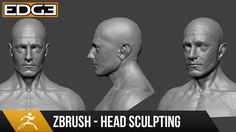 Head Sculpting with Dynamesh in Zbrush Tutorial series for Beginners HD ---------------------------------------------------------- Reference Image and w. Zbrush Tutorial, 3d Tutorial, Zbrush Character, Sculpting Tutorials, Character Design Tutorial, Digital Sculpting, Modeling Tips, Reference Images, Design Tutorials