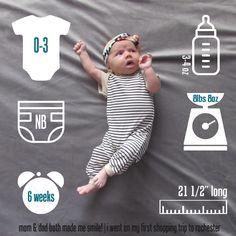 week no. 6 - weekly baby updates