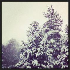 #lumen #lumo  #snow