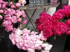 Beautiful peonies and roses ☺