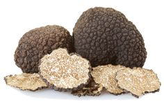 ◙ [Get Nulled]◚ Black Truffles Group And Slices On White, Clipping Path Alba Autumn Black Brown Clipping Path Cut Poisonous Mushrooms, Edible Mushrooms, Stuffed Mushrooms, White Truffle, Chocolate Truffles, Italian Recipes, Dog Food Recipes, Food And Drink, Tasty