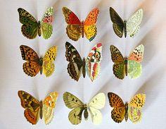 DIY Vegan Butterfly Framed Art