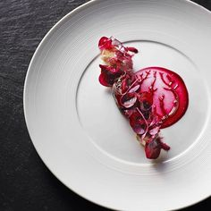 Our beloved 'Kongen af Danmark' in a main course edition☺️#Pork #cheeks #beetroot-anise #nougatine dried #raspberries and black #pepper. #King of #Denmark #Kokkeriet #Danish #cuisine #love #Copenhagen #spring #sun #TheArtofPlating #Michelin #Foodie #foodies #love #Kokkeriet #happy #art #food #new #interpretation @hipsterfoodofficial @feedfeed @theartofplating @gastroart @gastronogram @_foodstories_ @foodandwine @gastromanddk @truecooks