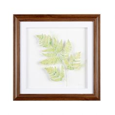 Layered Fern Framed Square Wall Art - Christmas Tree Shops and That! - Home Decor, Furniture & Gifts Store Framed Wall Art, Floral Wall Art, Christmas Tree Shop, Furniture Gifts, Holiday Wall Art, Shop Wall Art, Frames On Wall, Wall Frame Set, Xmas Tree Shop