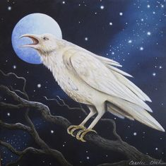 White Raven - 6 x 6 Print of Original Acrylic Halloween Cat Painting by Carolee Clark