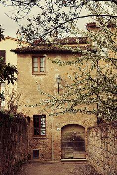 Fiori di primavera - Montepulciano, Tuscany | by © Pug!