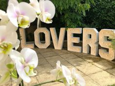 """Light Up Letters 💡 Venue Decor on Instagram: """"💡💖 Large Light up Letters for Hire 💖💡⠀ ⠀ With all our lovely bookings being postponed until later on in the year or next year we thought we…"""" Large Light Up Letters, Summer Wedding, Wedding Day, Bliss, Instagram, Decor, Pi Day Wedding, Decoration, Wedding Anniversary"""