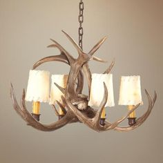 Lamps Plus Antler chandelier Deer Antler Chandelier, Antler Lights, Small Deer, Shed Antlers, Light Fixtures, Sconces, Decorating Ideas, Decor Ideas, Ceiling Lights