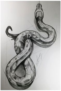 snake drawing drawings easy python simple pencil draw cool dark sketches painting schlange tutorial zeichnung detailed artwork zeichnungen realistic tats