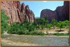 Virgin fiume utah | Il fiume Virgin attraversa buona parte del canyon e sono possibili ...