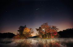 """""""An Orionid meteor streaks through the skies above French Creek State Park in Pennsylvania early Oct. 22, with the reds, yellows and oranges of autumn reflected in the trees below."""""""