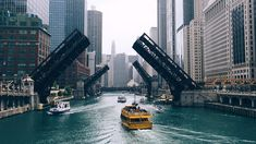 Chicago Housing Market: A Good Time To Buy Property? Chicago Vacation, Chicago Travel, Cheap Flight Deals, Airline Reservations, Real Estate Prices, Flight And Hotel, Cheap Tickets, Travel Companies, Top Hotels