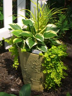 place a container garden in the garden to add height