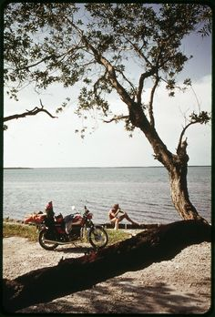 Vacationer From Ohio Relaxes near His Motorcycle During Sightseeing Tour of the Keys. Triumph Motorcycles, Vintage Motorcycles, New Ulm, Miss Moss, National Archives, Wild Hearts, Vintage Photographs, Tanzania, Harley Davidson
