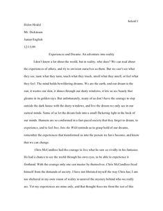 custom writing essays dissertation essay examples  argumentative essay on into the wild vision professional