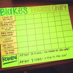 The reward chart