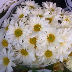 I love daisies!  So cheerful, I had to take a picture