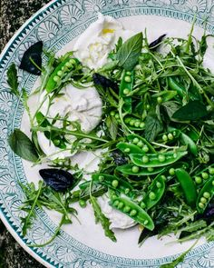 10- The Best of Salads :: Snap Pea and Burrata Salad from Bon Appetit Magazine
