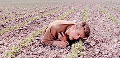 babeimgonnaleaveu: James Dean as Cal Trask in East of Eden