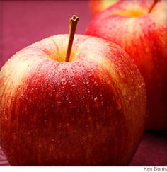 """Apple Buyer's Guide - Details on all - The best apple pie filling combines """"saucy"""" apples (varieties such as McIntosh, Cortland, Macoun, Mutsu (Crispin), Paula Red or Empire) AND """"shapely"""" apples (Granny Smith, Golden Delicious, Jonathon, Jonagold, Northern Spy or Ida Red)."""