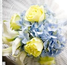French blue and yellow