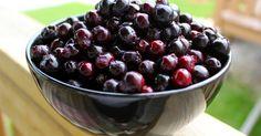 Cooking with Jax: Saskatoon Berry Jam Saskatoon Recipes, Saskatoon Berry Recipe, Cherry Recipes, Jam Recipes, Canning Recipes, Recipies, Snack Recipes, Beach Treats, Fruit Plus