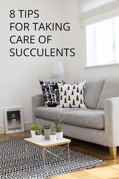 8 TIPS FOR TAKING CARE OF SUCCULENTS: http://www.candypop.uk.com/2015/10/02/8-tips-for-taking-care-of-succulents/
