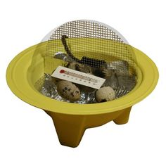 Chick-Bator Incubator at http://suliaszone.com/chick-bator-incubator/