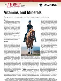 [FREE REPORT] Vitamins and Minerals - TheHorse.com | Vitamins and minerals represent only a tiny portion of your horse's feed intake, but they pack a nutritional wallop. Learn more by downloading this free factsheet from TheHorse.com! #horses #feedinghorses #vitamins