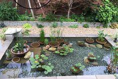 水生植物 総合提案事業 | 株式会社 杜若園芸
