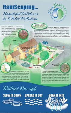 5 Miraculous Tips AND Tricks: Garden Landscaping Plans Backyards contemporary garden landscaping tuin. Water Pollution Solutions, Kew Gardens, Outdoor Gardens, Landscape Design, Garden Design, Drainage Solutions, Drainage Ideas, Erosion Control, Magic Garden
