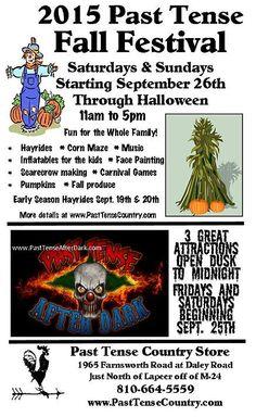 pasttensecountry Past Tense, Carnival Games, Fall Pumpkins, Halloween, Fun, Halloween Stuff, Lol, Funny