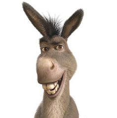 Donkeyy