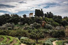 You know  the street of writers?   #Camilleri #Sciascia #Pirandello #Agrigento #visitsicilyinfo  ph Emanuele Simonaro