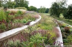 "Interesting article on ""post-wild"" gardening, a school of ornamental gardening that emphasizes growing resilient plant communities. The aesthetics of this ornamental dry meadow could easily be applied to an edible ecosystem."
