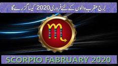 by m s Bakar Urdu Hindi Pisces Monthly Horoscope, Scorpio, February, Neon Signs, Scorpion