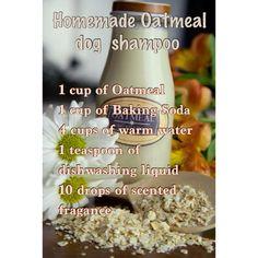 Homade Oatmeal Dogs Shampoo