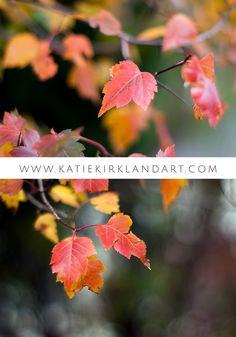 """Autumn Red"" and ""Autumn Red II"" art prints by Katie Kirkland Fine Art"