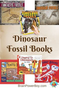 Best Books for Boys: Dinosaur Fossils