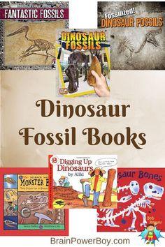Best Books for Boys: Dinosaur Fossils