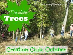 October Nature Study with Deciduous Trees