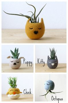 Felt succulent planter / Kitty cat vase / por theYarnKitchen
