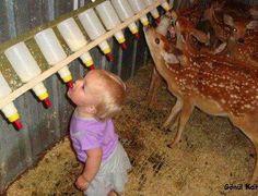 Never seen a deer feeder like this.
