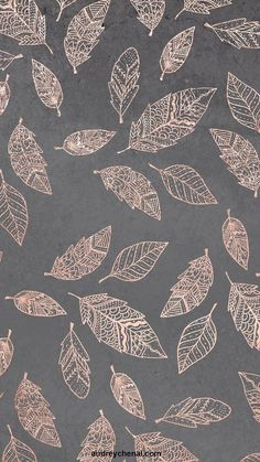 Rose gold hand drawn boho feathers hand drawn grey industrial concrete cement by Audrey Chenal wallp&; Rose gold hand drawn boho feathers hand drawn grey industrial concrete cement by Audrey Chenal wallp&; Gold Wallpaper Background, Rose Gold Wallpaper, Cute Wallpaper Backgrounds, Pretty Wallpapers, Flower Wallpaper, Feather Wallpaper, Boho Backgrounds, Trendy Wallpaper, Iphone Backgrounds
