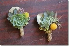 Idee originali per il tuo matrimonio? Le succulenti: piccoli capolavori ~ Il Blog di Zagara