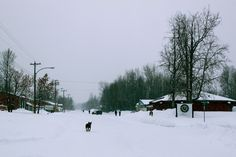 Fort Liard's main street in snow Northwest Territories, New Adventures, Main Street, North West, Maine, Canada, Snow, Winter, Outdoor
