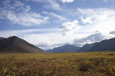 "A documentary about a journey to ""The Edge of the Earth"". The Gates of the Arctic National Park is the northernmost national park in the U.S. (the entirety of the park lies north of the Arctic Circle).There are no established roads, trails, visitor facilities, or campgrounds in the park."